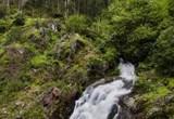 Wasser aus Monchique