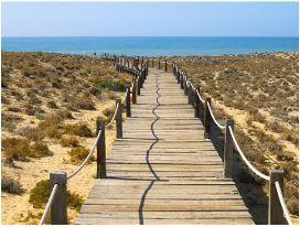 Portugal Realty Praia Grande