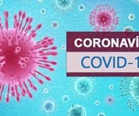 Covid-19. A situação do novo coronavírus no país e no mundo ao minuto