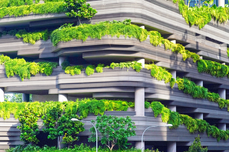 importância da vida sustentável no mercado imobiliário