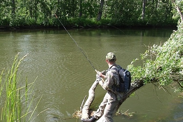 Fishing in Portugal