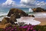 PORTUGAL - a very popular destination