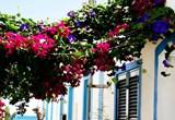 Portimao und der Kreuzfahrttourismus in der Algarve