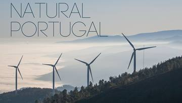 +100% of Portugal's Energy in March was Renewable!