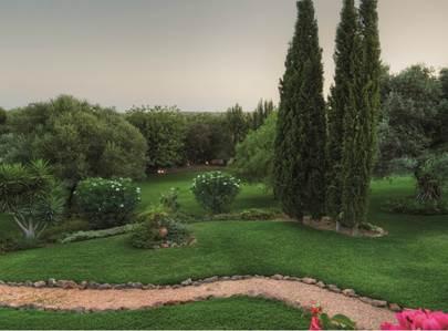 Algarve,vilamoura,quinta lago,lobo de fazer vale,algarve,triângulo dourado
