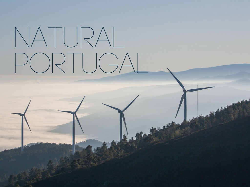 Portugal-107-Renewable-energy-March2018_20180413.jpg
